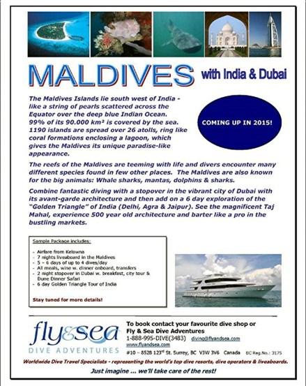 2015 Maldives Flyer