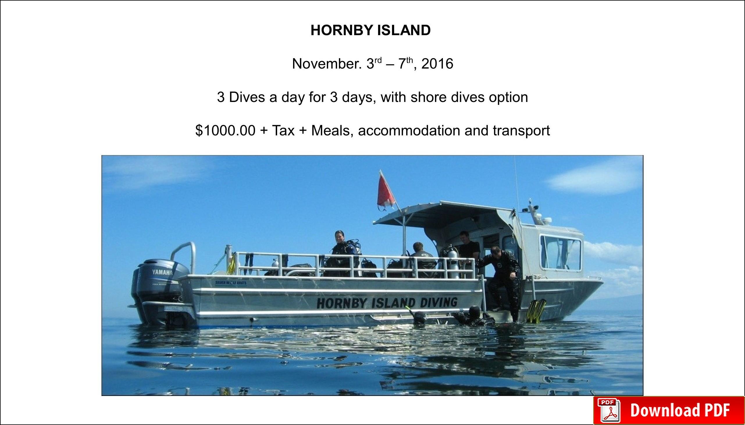 2016 Hornby Island Dive Trip Vernon Kelowna Okanagan Sup